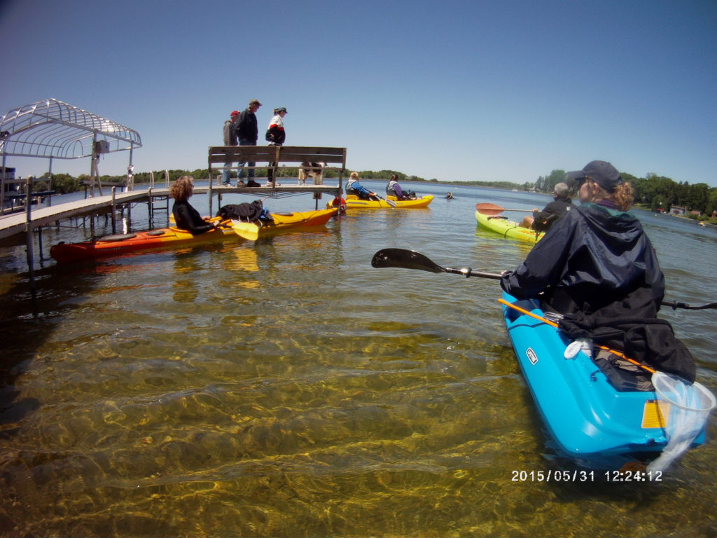 Invasive Aquatic Plant Removal Surface Support