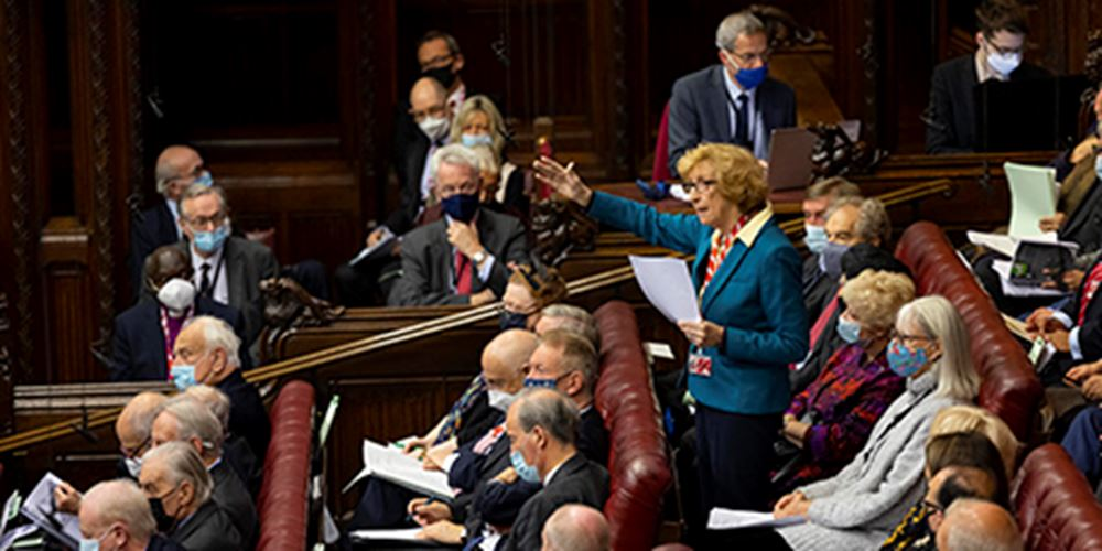 Baroness Meacher on her feet addressing the House of Lords
