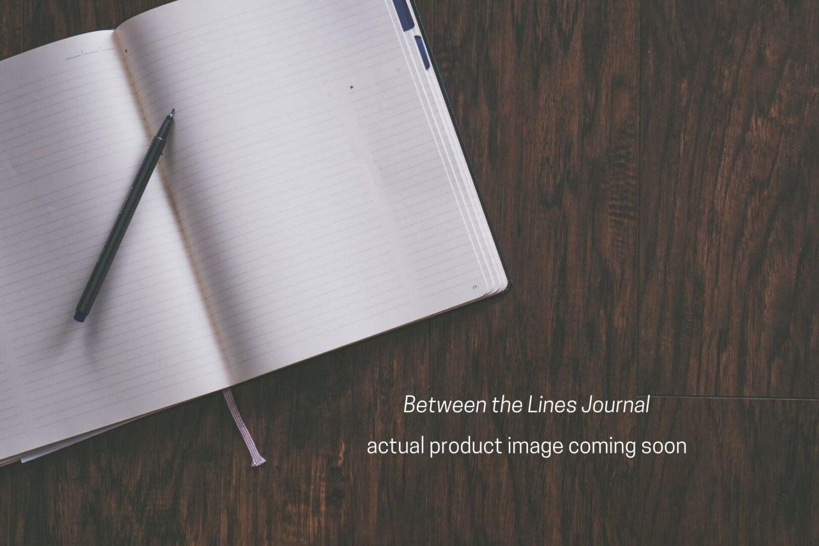 Fake Journal 1