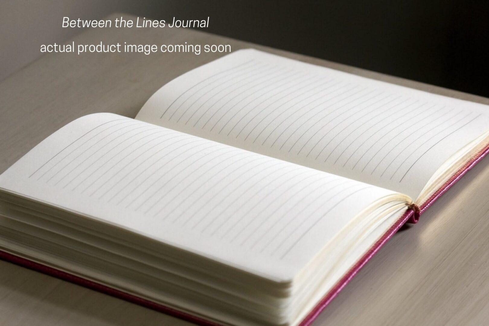 Fake Journal 2