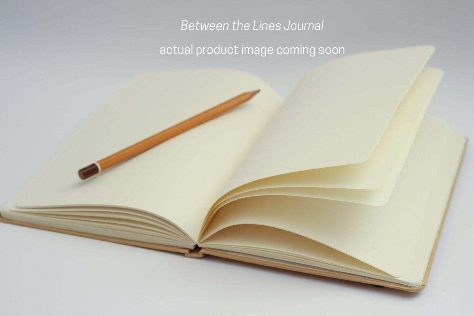 Fake Journal 4