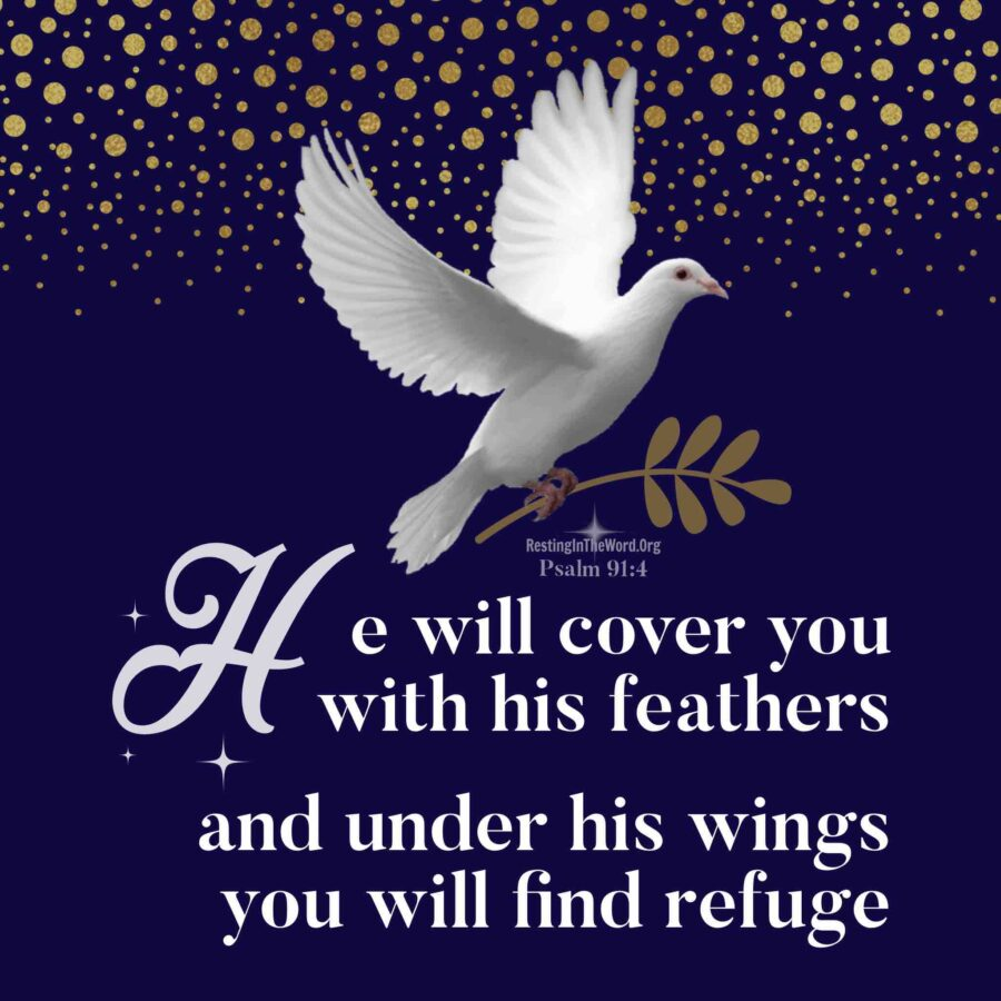 The Lord covers us with HIs protection like a mother bird protects her young from the ravages of the storm.