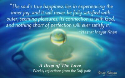 Soul's True Happiness