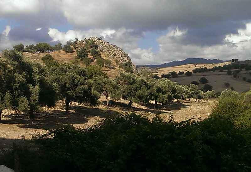 Sarama Village