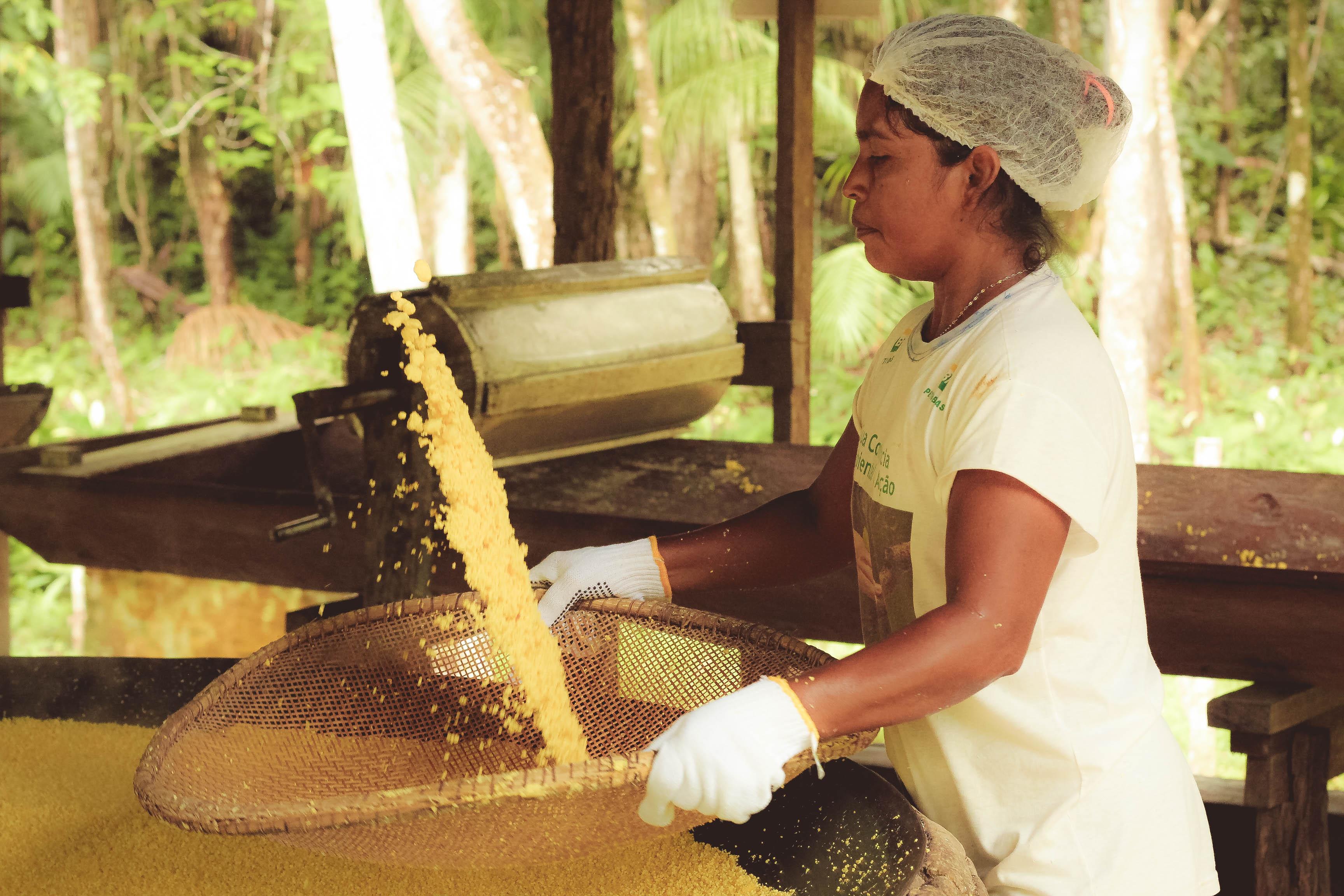 La SDSN Amazonía premia soluciones en Bioeconomía con hasta 6 mil dolares