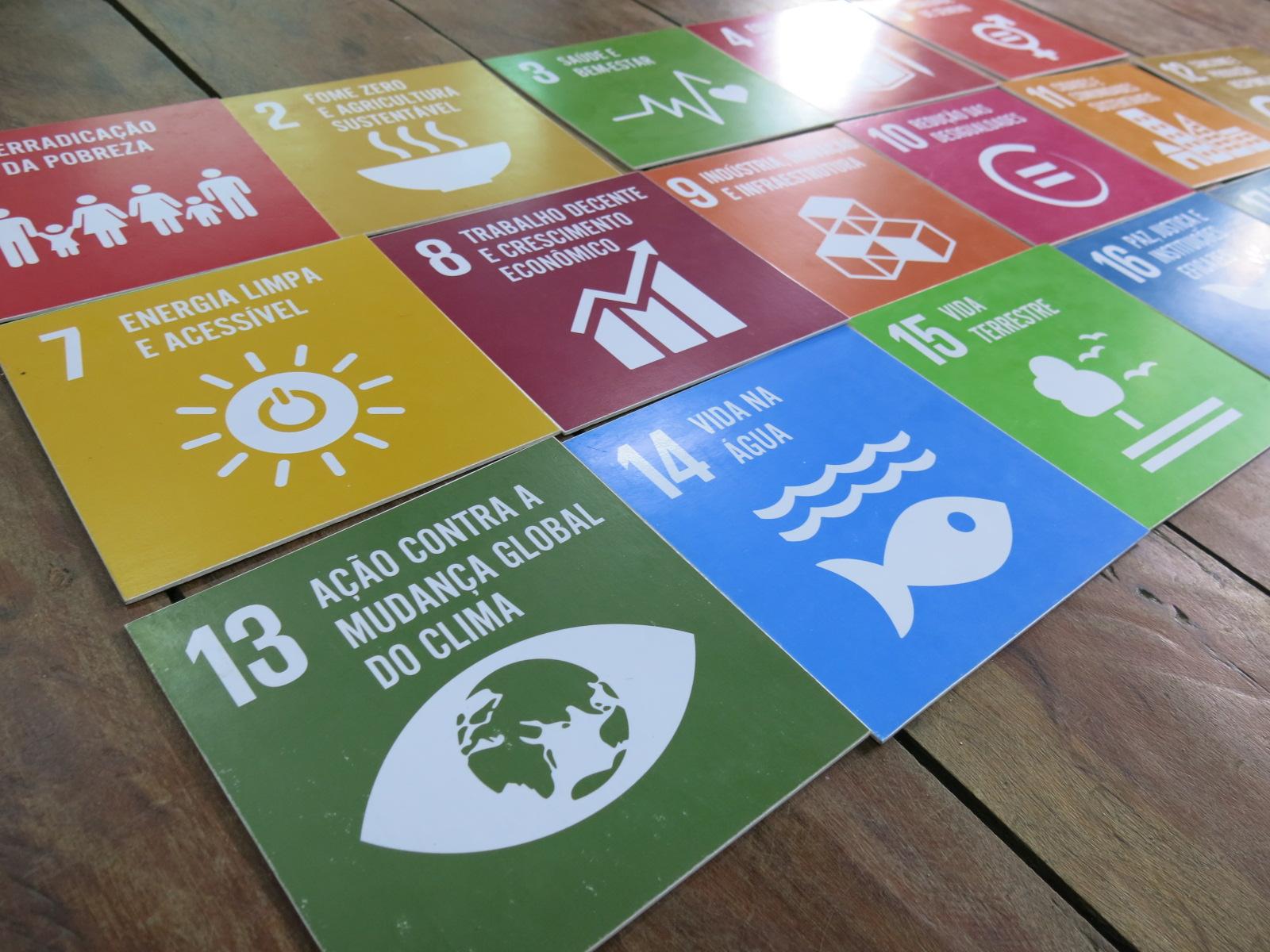 Conferência LCOY Brasil reúne jovens para debater questões climáticas