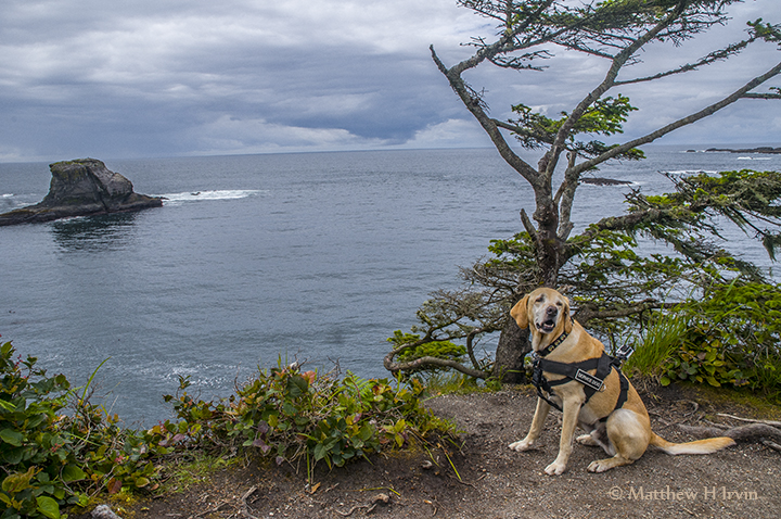 This is Cape Flattery and as far as we could go west!
