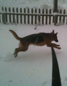 At least she is excited every time it snows!
