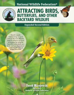 Attracting birds, butterflies, and other backyard wildlife cover