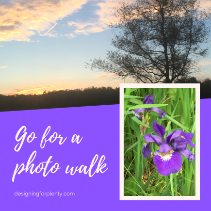 Go for a photo walk