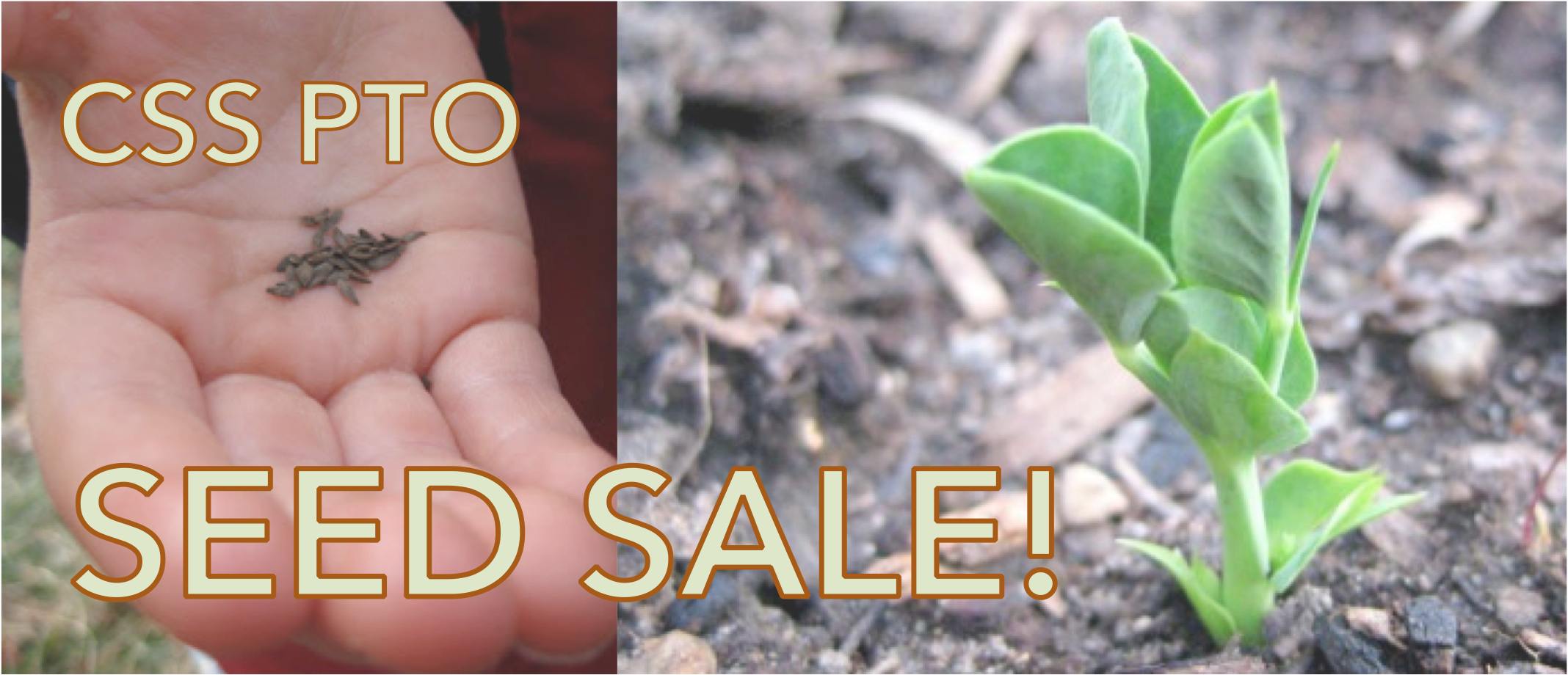 Buy seeds and support PTO!