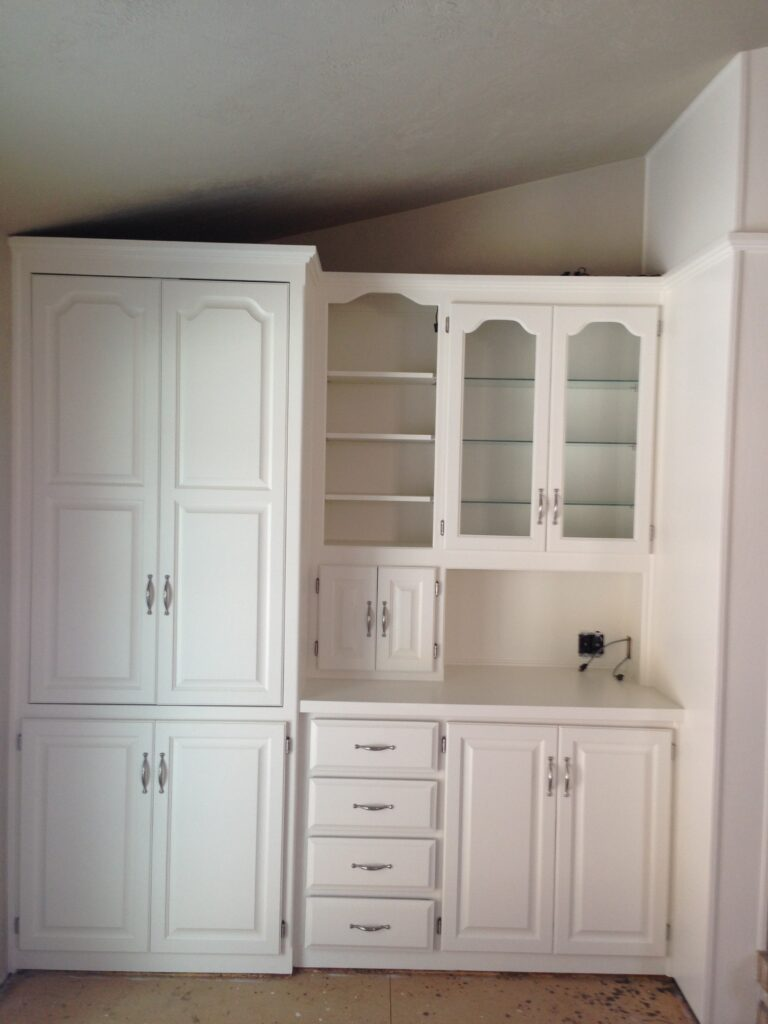 Built-in Cabinets and Counter
