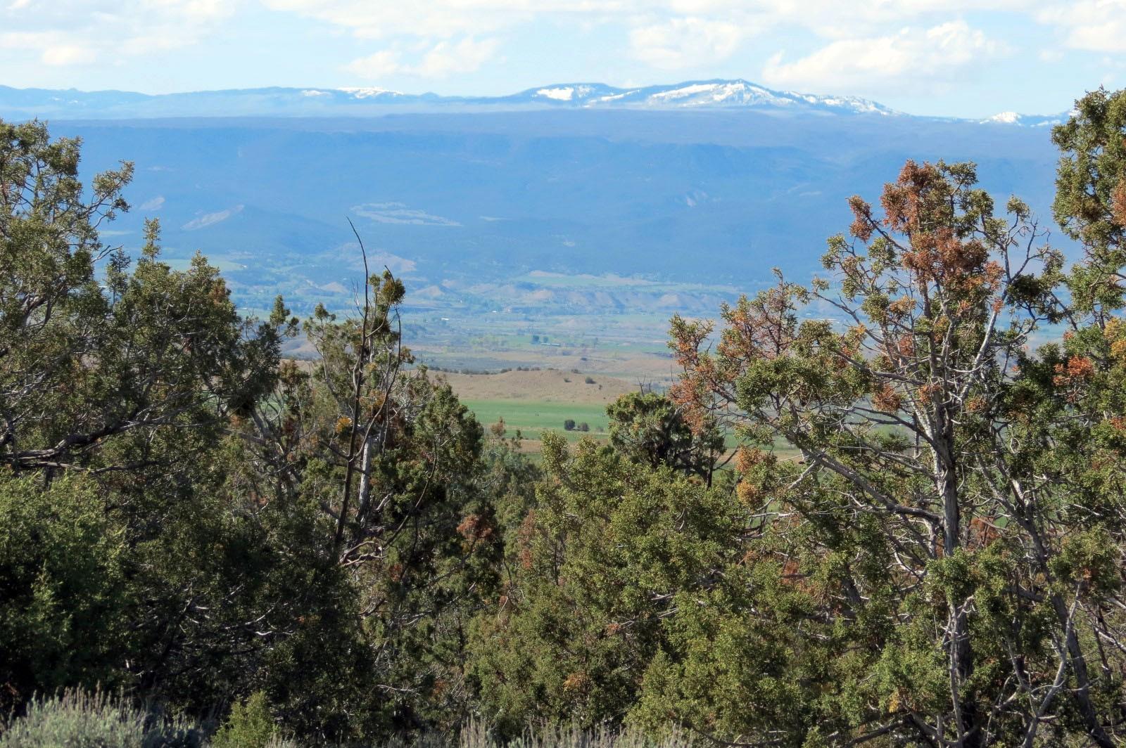 grand mesa view