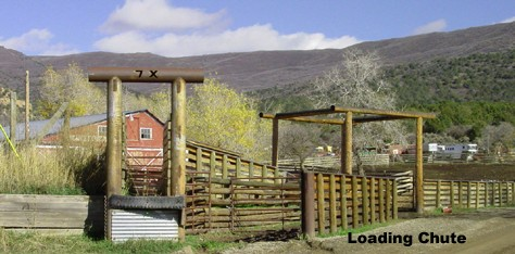 loading chute