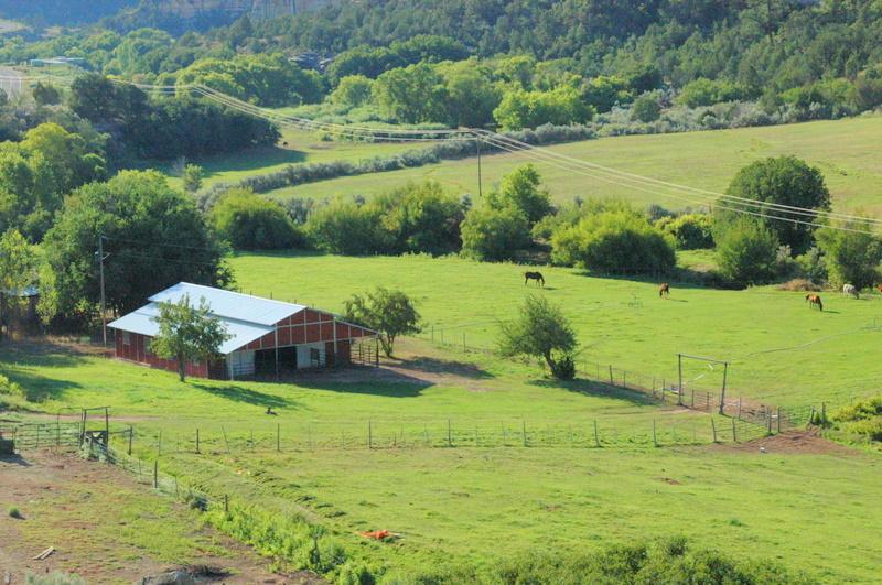 barn & fields looking SE (2)