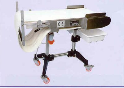 Jaccard Commercial Sectormatic Rotary Strip Slicerconveyor