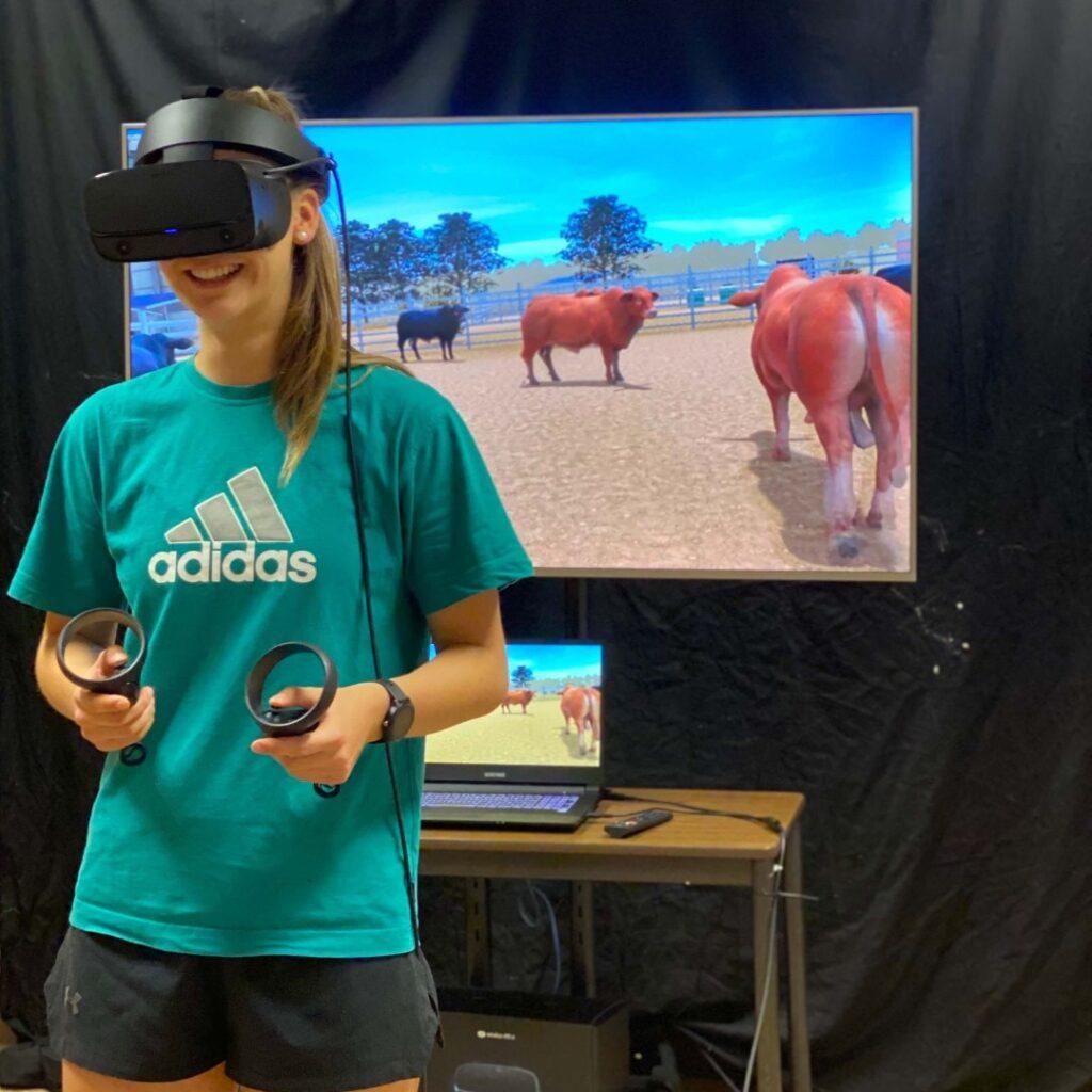 Virtual Reality Large Animal Handling Simulator