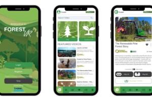 custom-vr-ar-apps-forestvr