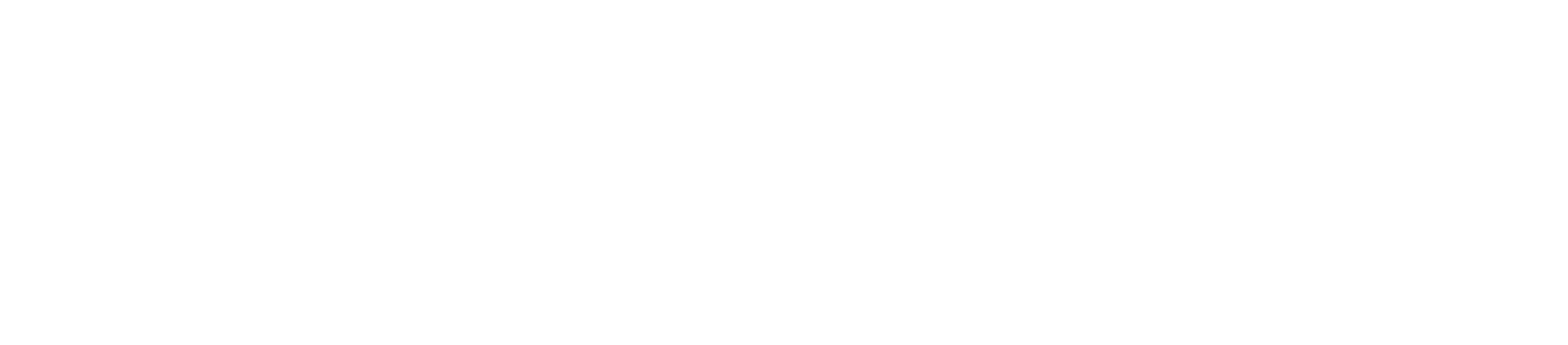 Haas Crane & Equipment Rentals LLC