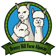 Breezy Hill Logo