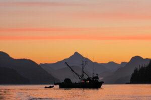 Salmon Closures — Fighting Back