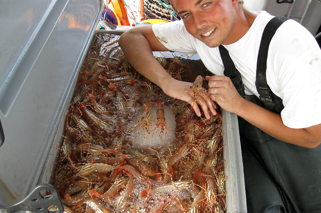 Fight Against DFO Prawn Tubbing Ban Continues