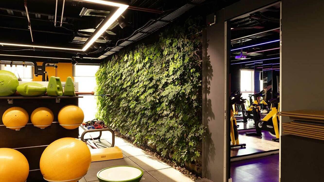 Sam Gym Studio
