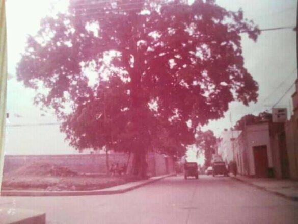 La cancha techada de La Loma: una mirada en el tiempo