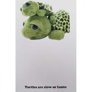 Lento-the-Turtle