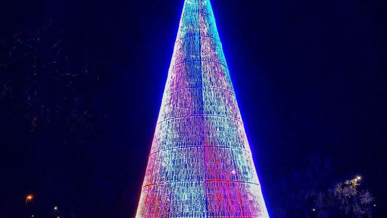 Go see the Mile High Tree
