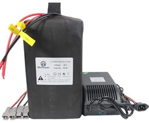 BtrPower Electric Bike Battery 20AH 36v 48v 60v 72v LiFePO4 Battery Pack with 50A BMS and 5A Fast Charger for 1500W-350W Motor,Perfect for Ebike E-Scooter E-Tricycle E-Motorcycle
