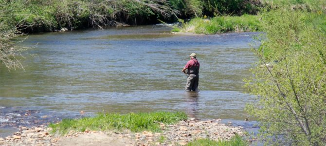 Trout Stocking 2017  | The New River