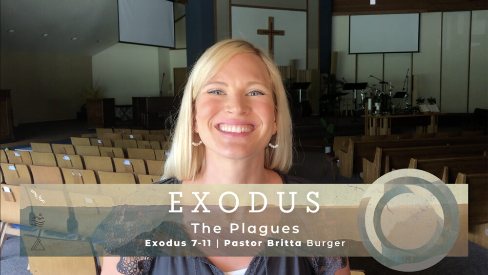 The Plagues Image