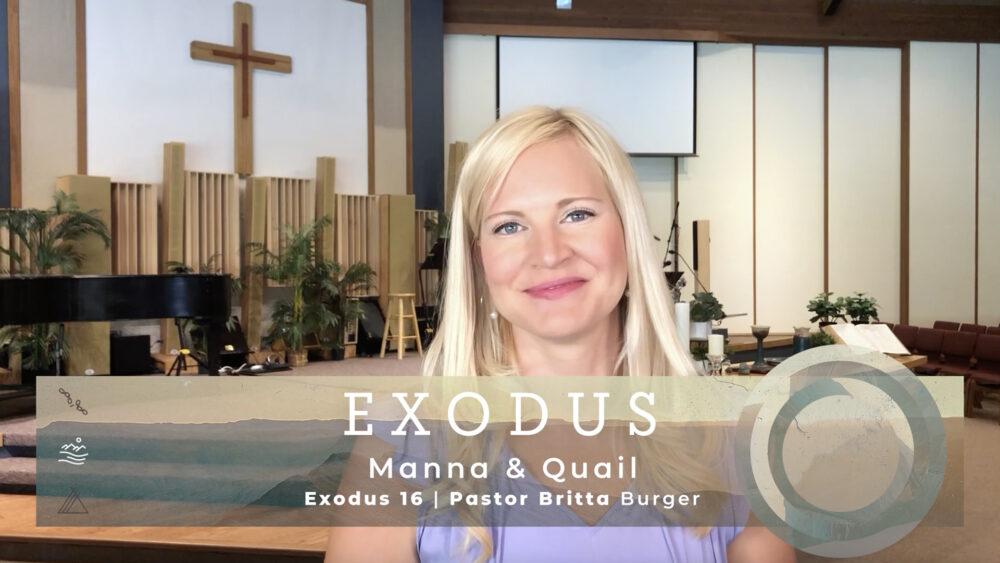 Manna & Quail Image