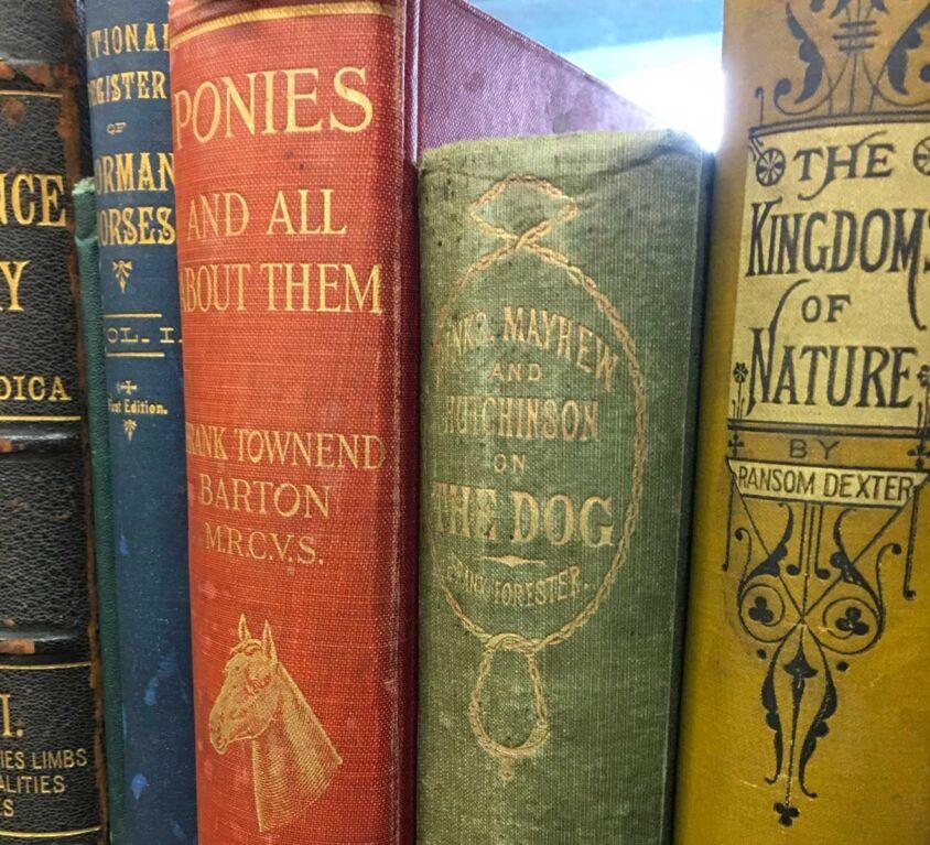 Clovis Book Barn