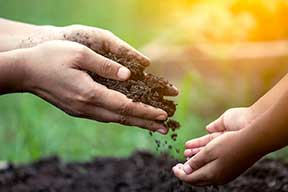 Teach your children to compost
