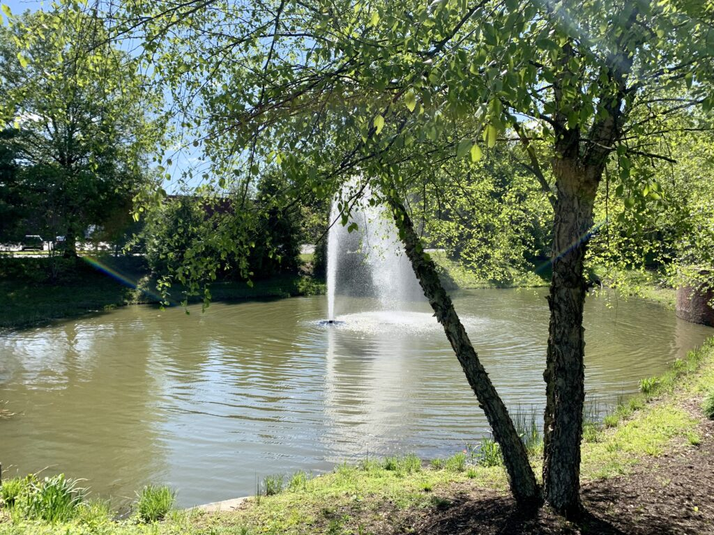 Exchange At Van Dorn Condos pond fountain