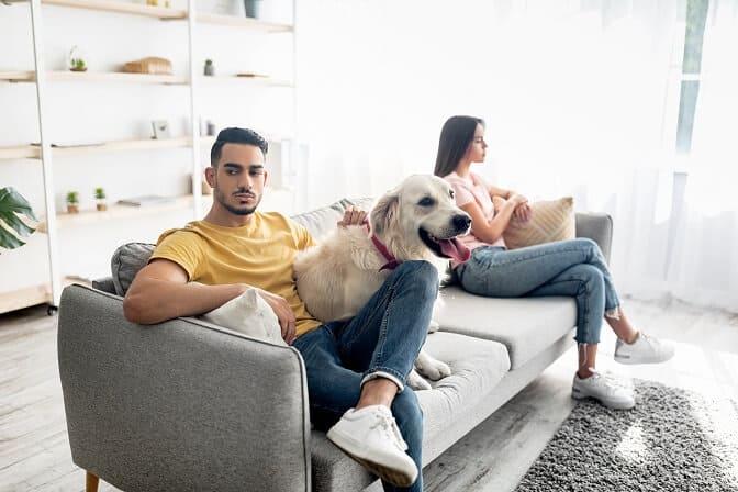 pet custody during separation in Melbourne