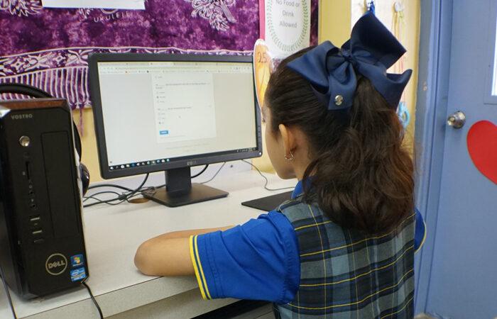 Caribbean School student using computer