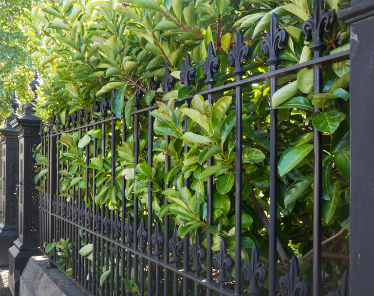 Wrought Iron Fence for Business