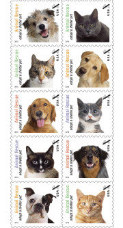Animal Rescue: Adopt a Shelter Pet on-sale as of April 30, 2010.