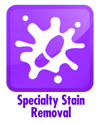 Specialty Stain Removal Service