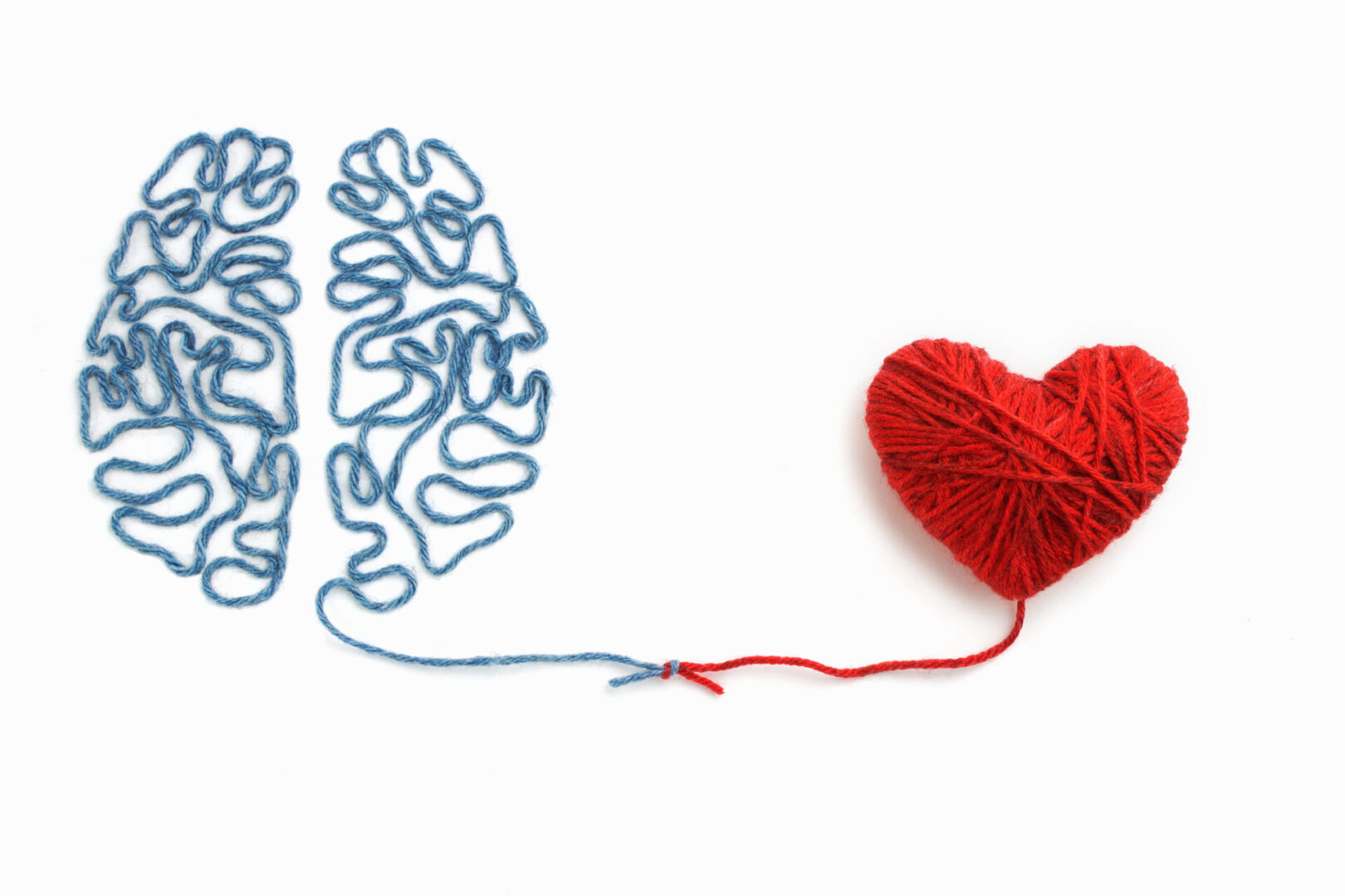 String Brain and Heart