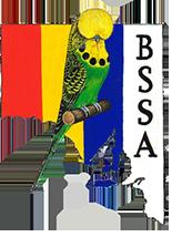 bssa logo