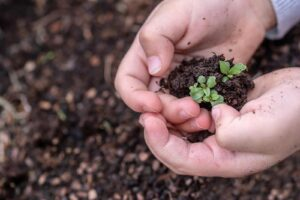 Four Ways To Celebrate Arbor Day Image showing a young child planting a tree in the dirt