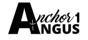Anchor 1 Angus