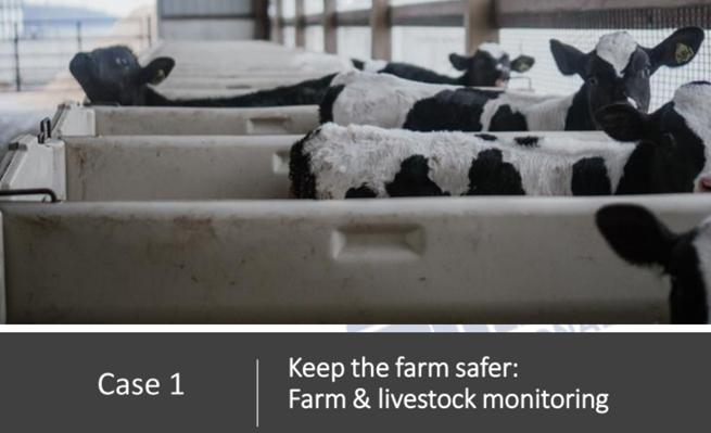 How to deploy camera system in a farm project