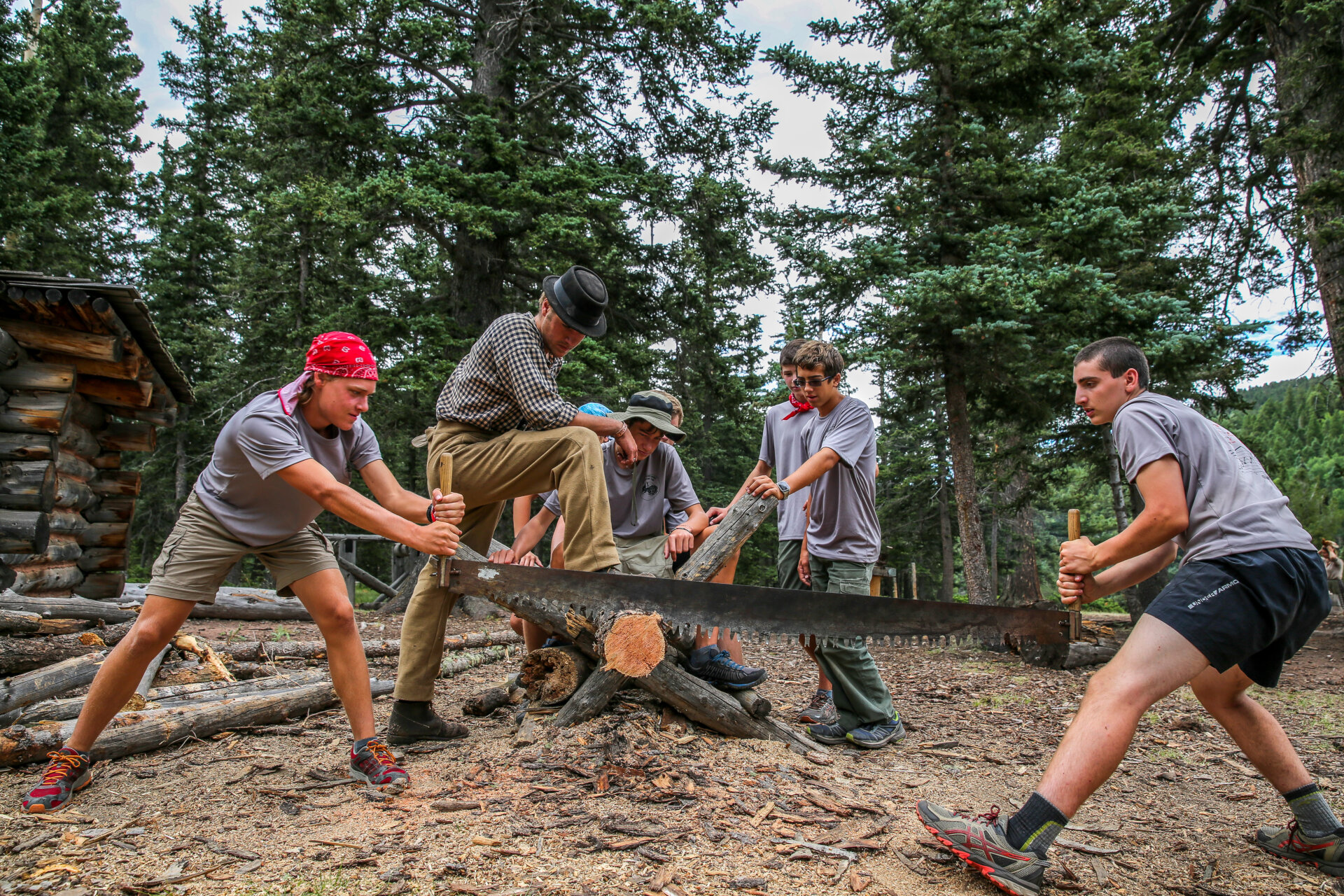 Two man buck saw in Philmont