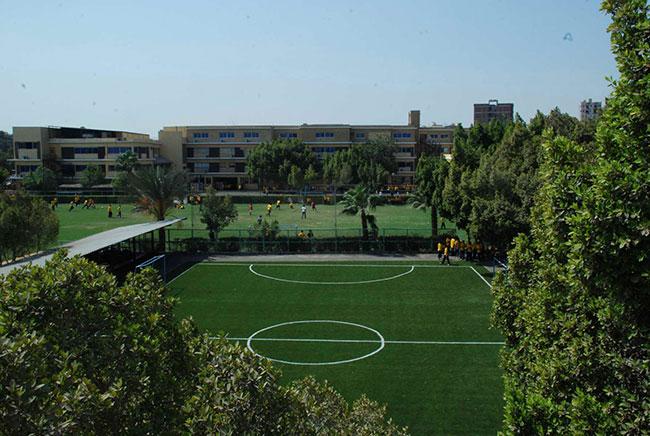 Al-Alsson-School