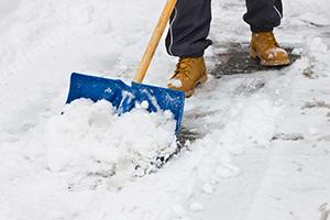 snow-services